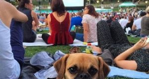 Free Outdoor Movies in Los Angeles